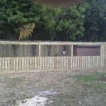 IMG_0870